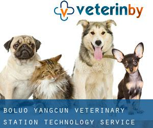 Boluo Yangcun Veterinary Station Technology Service Center