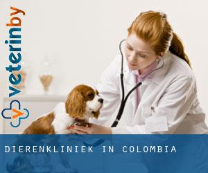 Dierenkliniek in Colombia