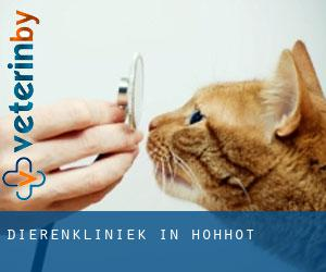 Dierenkliniek in Hohhot