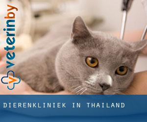 Dierenkliniek in Thailand