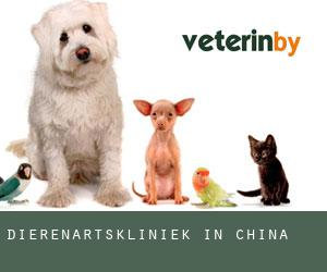 Dierenartskliniek in China