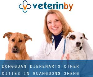 Dongguan dierenarts (Other Cities in Guangdong Sheng, Guangdong Sheng)