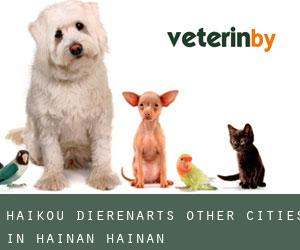 Haikou dierenarts (Other Cities in Hainan, Hainan)