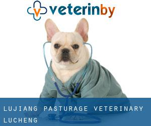 Lujiang Pasturage Veterinary (Lucheng)