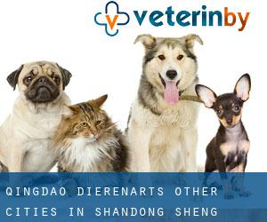 Qingdao dierenarts (Other Cities in Shandong Sheng, Shandong Sheng)