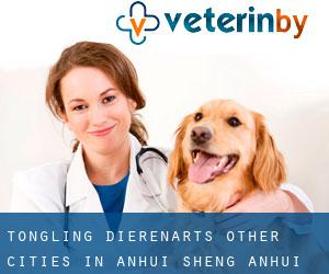 Tongling dierenarts (Other Cities in Anhui Sheng, Anhui Sheng)