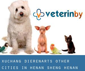 Xuchang dierenarts (Other Cities in Henan Sheng, Henan Sheng)